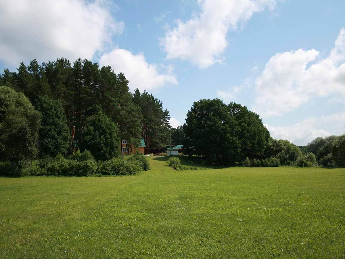 База отдыха в лесу: преимущества лесного отдыха