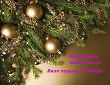 """Приглашаем провести Новогоднюю ночь на базе отдыха """"Отрада""""!"""